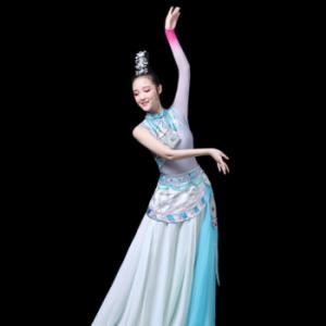 藏族舞蹈服装演出服女成人西藏